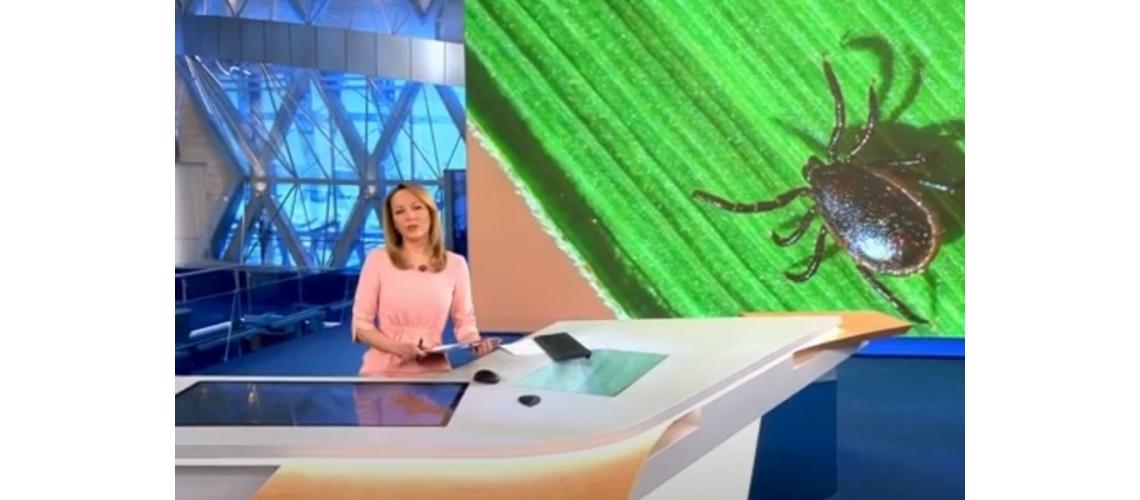 В Сибири обнаружили новый особо опасный вид клеща